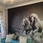 Gold Coast wall mural installation