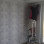 Hamilton Brisbane Wallpaper Installation
