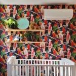 parrot wallpaper installation Zillmere Brisbane