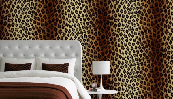 leopard wallpaper for room images pictures becuo
