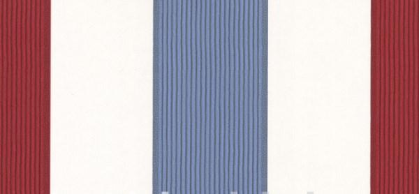 Closeup of Bam Bam stripe design