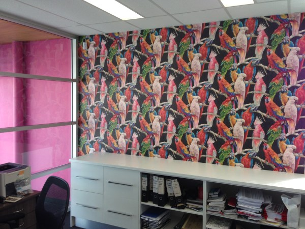 Parrot Wallpaper Bright Fun Amp Eye Catching
