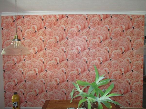 flamingo wallpaper installaion Sunshine Coast