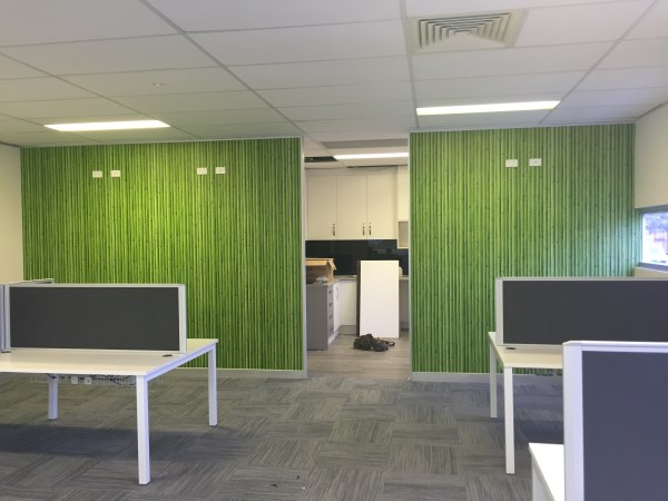 bamboo wallpaper in office
